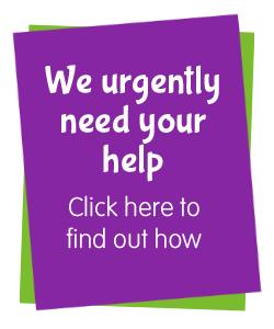 urgent-help-needed